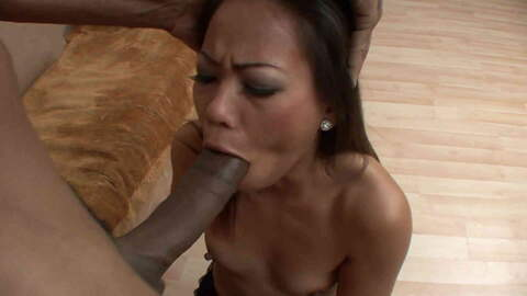 A huge black cock for a tiny asian pus...photo 1